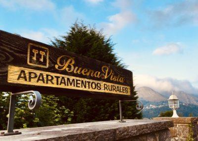 Cartel entrada Buenavista